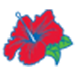Flower from Borinquen Logo